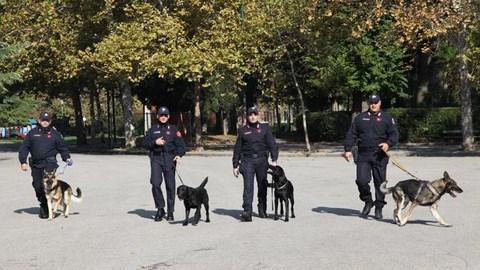 201010-dimostrazione unita' cinofila Carabinieri antidroga-simulazione ritrovamento stupefacenti ai giardini Margherita-foto Nucci/Benvenuti