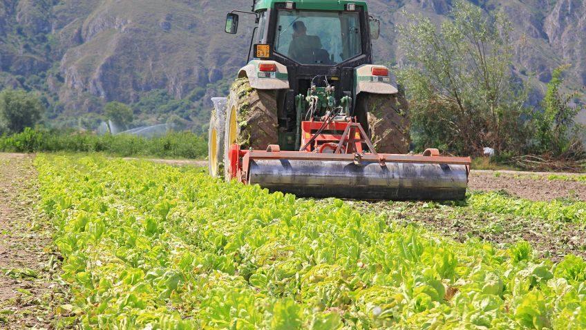 Ribera: Si è svolto l'incontro tra i comuni del comprensorio agricolo riberese ed il Prefetto di Agrigento