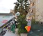 Raccolta differenziata delle utenze commerciali in via Atenea. Precisazione delle ditte