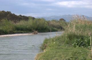 Ribera: Le piogge ingrossano il fiume Verdura