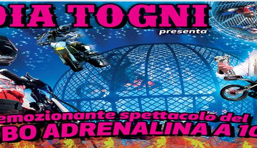 Lo spettacolare show del Circo Lidia Togni ad Agrigento