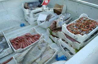 SICUREZZA ALIMENTARE NON GARANTITA:  sequestro di circa 193 kg di prodotti ittici privi di tracciabilità